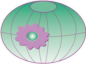 Mitgliedschaft bei NATUM e.V. Naturheilkunde, Akupunktur, Umwelt- und Komplementärmedizin